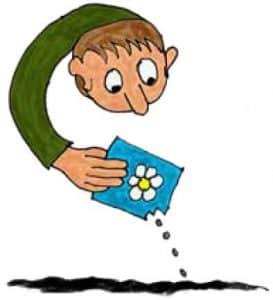 Hvad-er-et-frø-og-hvad-bliver-det-til? Er-et scienceforsøg-for-børn  Science-i-boernehoejde.dknce